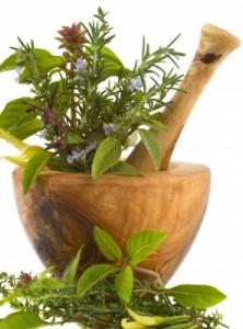 Bay Naturopath | Homeopathy