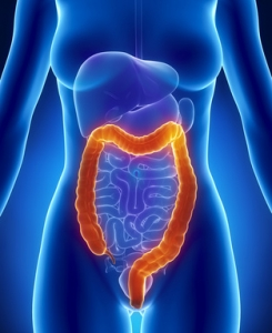 Colonic Hydrotherapy | The Wellness Directory