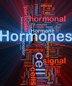 Hormone Imbalance | The Wellness Directory