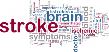 Stroke | The Wellness Directory